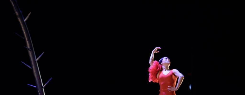 Olga Pericet al Teatre Principal