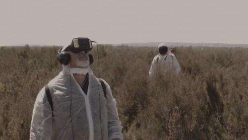 Curts 2018 · Pesticidas